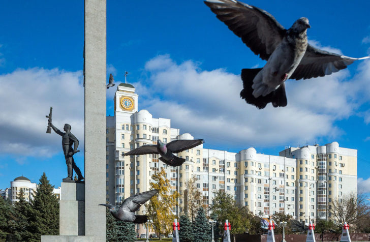 Брянск 8212 город контрастов