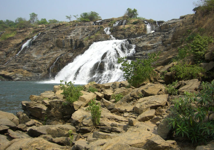 Национальные парки Нигерии которые стоит посетить