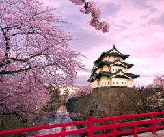Ноябрьские праздники в Японии