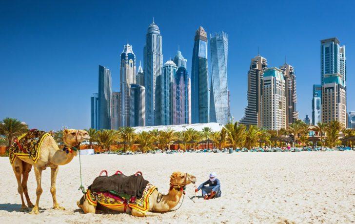 Спецпредложения в ОАЭ 2019
